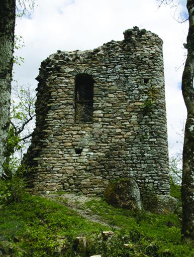 Fig. 1 - Vue de la tour pentagonale