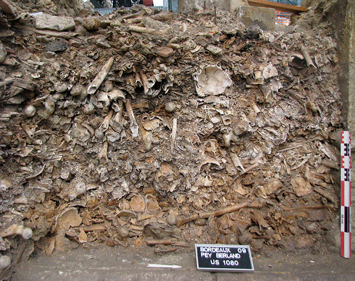Fig. 4 - Ossuaire dégagé dans le comblement du clocher-porche