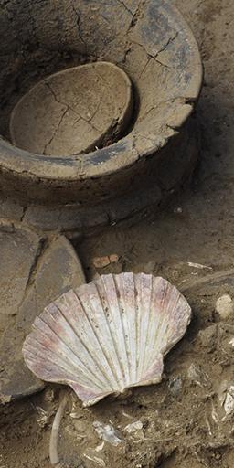 Fig. 2 - Dépôt d'une sépulture du premier âge du Fer