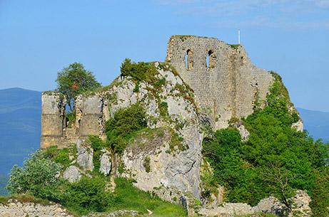 Fig. 1 - Vue du château