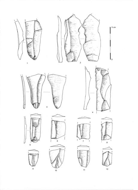 Fig. 1 - Lames et lamelles
