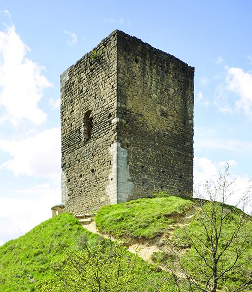 Fig. 1 - La tour d'Albon installée sur une motte