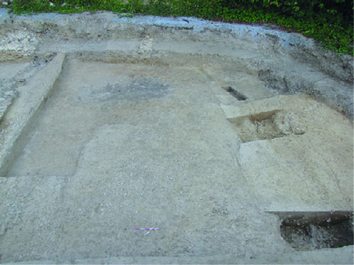 Fig. 1 - Vue générale de la voie et de ses fossés bordiers